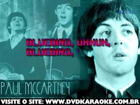 Paul Mccartney   Bluebird